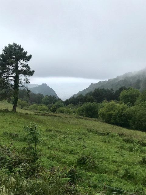 Day 4 Irun to San Sebastián 15 miles (55 miles total) – Just